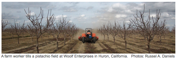 Healthy Food for California Farm Workers