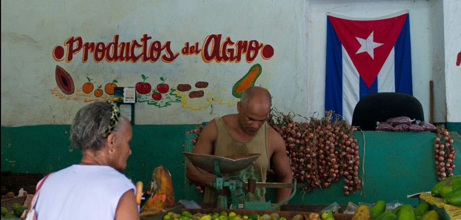 Inside the Cuban Kitchen and organic farming