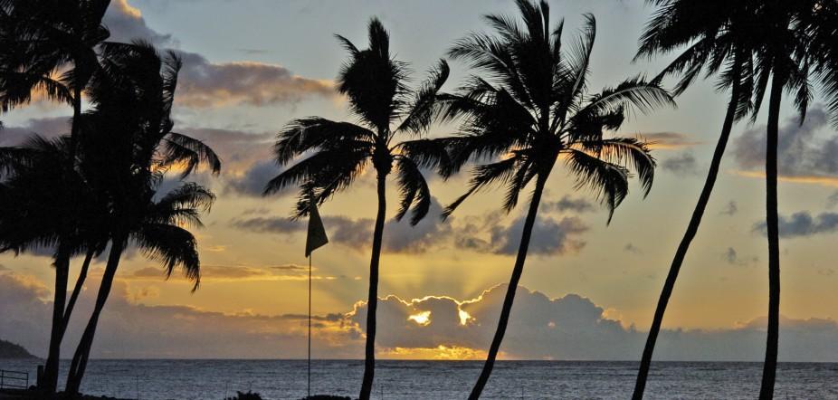 Aloha, Latinos: life in Hawaii