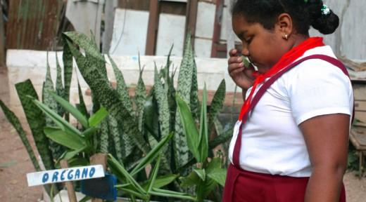 Carla Resla Smells Oregano at Havana Vieja garden