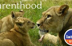 ParenthoodPromo